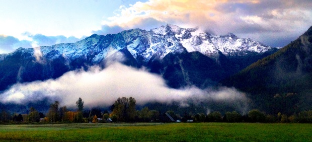 pemberton-valley-fog