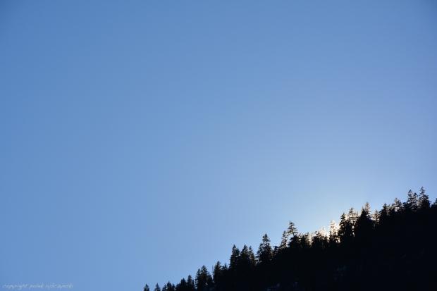 Polek Rybcynski Valley of Light