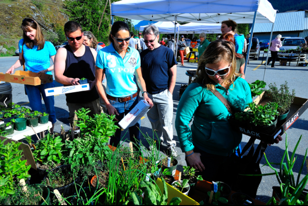 Dave Steers captures the WI Plant Sale 2013