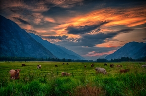 Pemberton Evening, by Dave Steers. August 2014