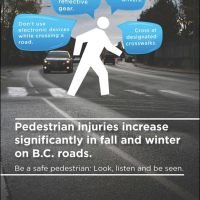 Walk Safe, Drive Slow, Stay Alive - and grab a free reflector from the Village of Pemberton office