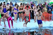 Polar Bear swim in pink