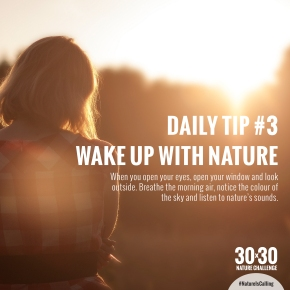 Daily_Tip_3