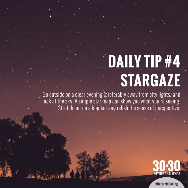 Daily_Tip_4