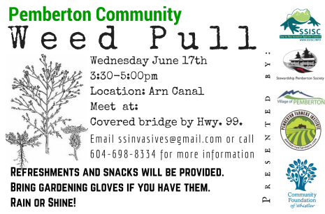 Pemberton Community Weed Pull