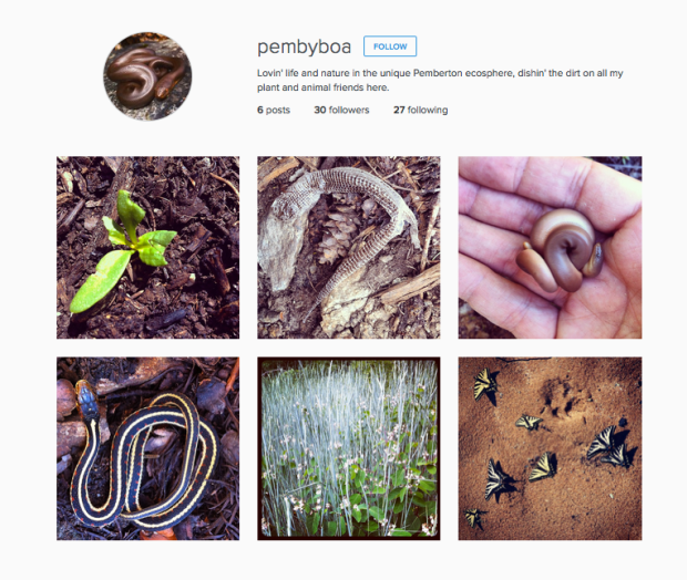 pembyboa is on instagram