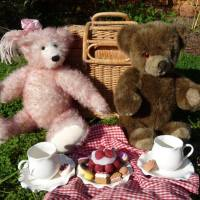 Calling all bear-lovers. The Library is hosting a Teddy Bear's Picnic, next Friday, August 7, 11am
