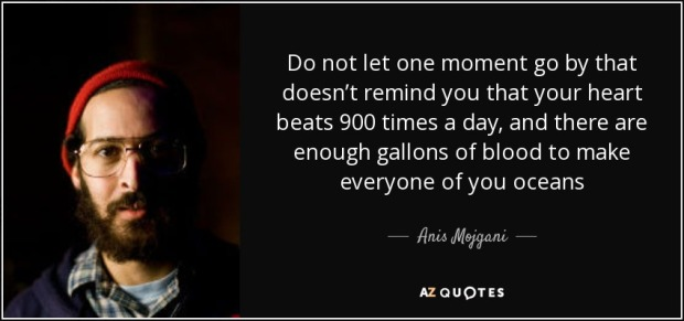 quote-do-not-let-one-moment-go-by-that-doesn-t-remind-you-that-your-heart-beats-900-times-anis-mojgani-64-24-05