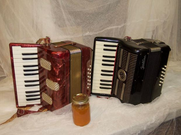 accordions-from-connie