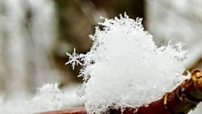 snowflake-by-victoria-saddleman