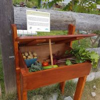 Deposit your garden bounty here: New Harvest Box installed at the Community Garden