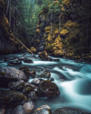 David Ward, Ure Creek, too sacred for hydro development