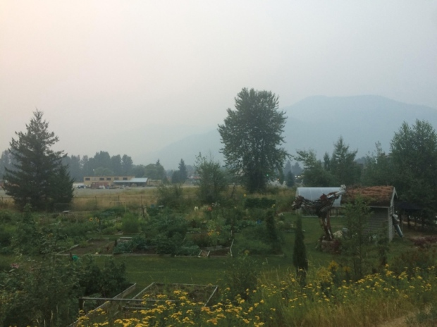 pemberton-creek-community-garden