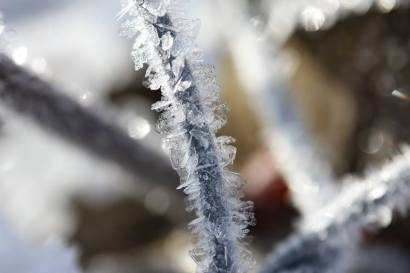 mailryn's winter 4