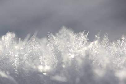 marilyn's winter 5