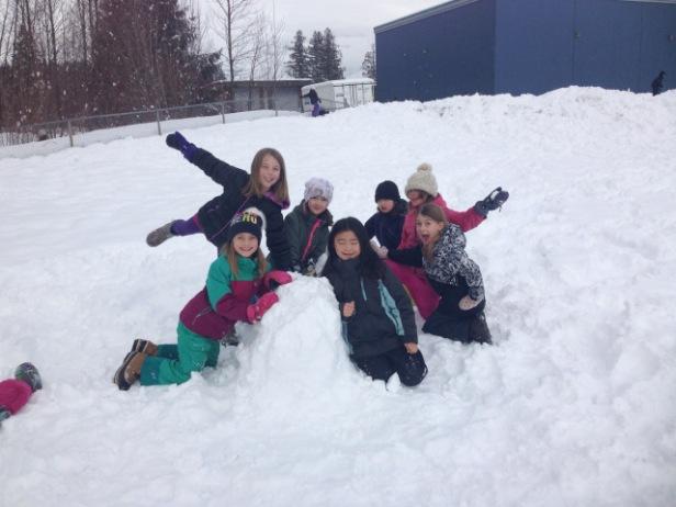 snow cultpure signal hill 2