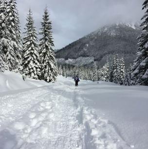 Snowshoe treks by Dawn hunter