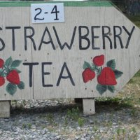 Women's Institute's Annual Strawberry Tea at the Museum June 19 2pm - 4pm