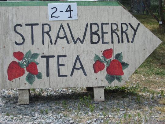 june 28_strawberrytea 004_resize.jpg
