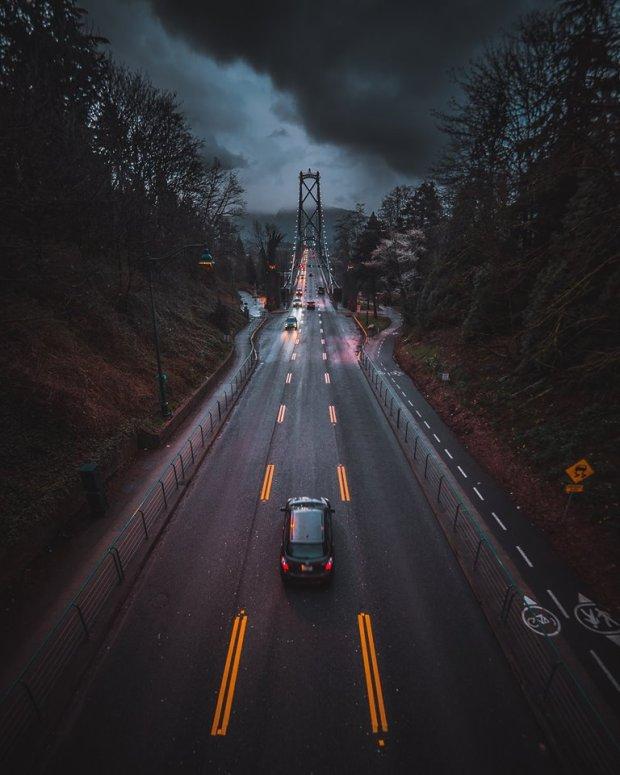 crossing the bridge by david ward