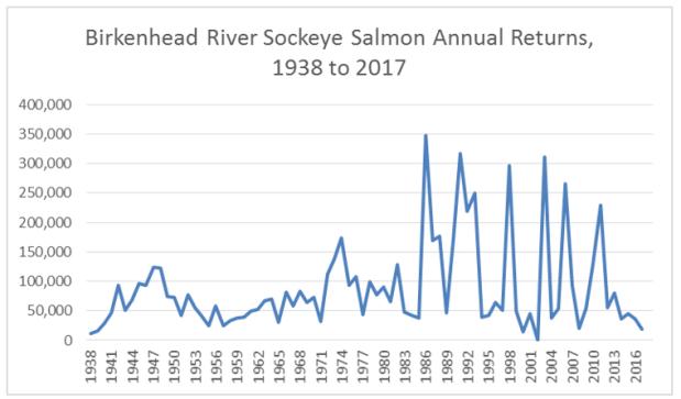 birkenhead river sockeye returns