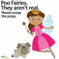 Poo fairies aren't real