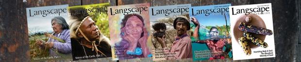Langscape-Banner