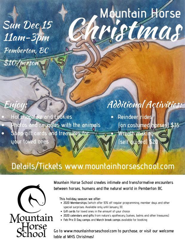 MHS XMAS full poster