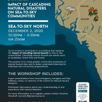 Virtual workshop on the Impact of Cascading Natural Disasters, Dec 2 and 3