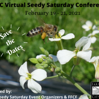 Seed saving in a pandemic: virtual conference set for Feb 19-21